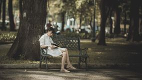 Photo of Woman Sitting in the Bench Near Tree royalty free stock photography