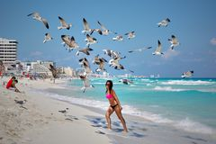 Photo of a Woman Under Flying Seagulls Royalty Free Stock Image