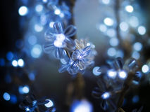 Photo of wonderful blue light Stock Photos