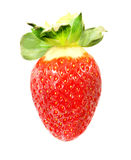 Photo wonderful Strawberry Royalty Free Stock Photo