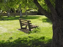 Solitary  peaceful park bench quiet peace time royalty free stock photography
