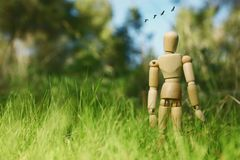 Photo of wooden dummy standing in field looking forward at flying birds. think big and dream concept. Photo of wooden dummy standing in field looking forward at royalty free stock photos
