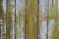 Photo of wooden fence in summer garden. Photo backround of garden fence from wooden planks with bright moss Stock Image