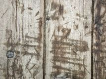 Photo of a wooden surface for the background stock images