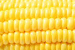 Photo of yellow corn Royalty Free Stock Photos