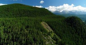 Pakistan: Wooded mountain slope stock image