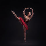 Young balet dancer Royalty Free Stock Images