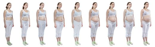 Photo young girl during pregnancy with bare belly. Caucasian woman during pregnancy with bare belly on white background stock image