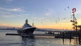 Photobombed Sunsets royalty-vrije stock afbeeldingen
