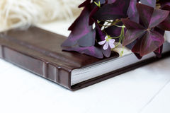 Photobook white with brown lies on a white background near lies a beautiful flower Stock Photo