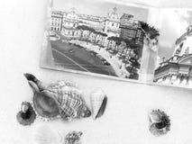 Photobooken och cockleshellsna är på vit sand Royaltyfria Bilder