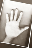 Photocopy of hand. Black and white Photocopy of hand Royalty Free Stock Photos