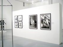Photoexhibition av Veruschka i Moscow Arkivfoton