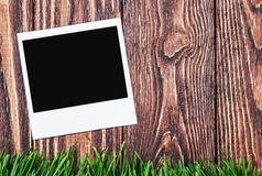 Photoframe on the background of grass Stock Photo