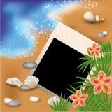 Photoframe di estate con i fiori e l'palma-albero Fotografia Stock Libera da Diritti