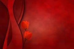 Photoframe elegante con los tulipanes pintados a mano Fotografía de archivo