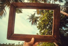 Photoframe for the memory about holidays on tropical beach. Palm trees at sunny day.  Stock Photography