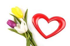 Photoframe y tulipanes del corazón Fotos de archivo libres de regalías