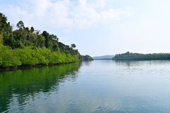 Backwater with Mangroves on Banks with Clear Water and Blue Sky - River on Great Andaman Trunk Road, Baratang Island, India. This is a photograph of backwater stock image