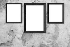 Photograph, Black And White, Picture Frame, Monochrome Photography Royalty Free Stock Photography