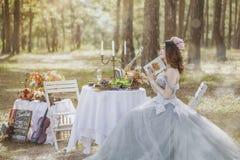Photograph, Bride, Gown, Wedding Dress Royalty Free Stock Photos