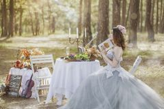 Photograph, Bride, Gown, Wedding Dress Royalty Free Stock Photography