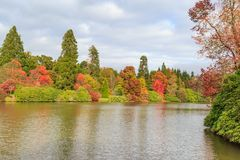 Sheffield Park Gardens. A photograph of colourful autumnal trees in front of a lake royalty free stock photo