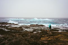 Photograph with a dog looking for motive. Waves hitting volcanic rocky coastline. Sahara dust in the sky. Santo Antao. Island, Cape Verde Stock Photos