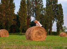 Photograph of a field with rolls of hay that will be food for farm animals stock photo