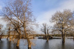 Photograph Of Flooded Land With Floating Houses And Huts On Sava River – Block 45 – New Belgrade – Serbia. Early spring photograph, made at New Belgrade&# Royalty Free Stock Photos