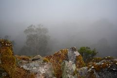Foggy mountain scene Royalty Free Stock Images