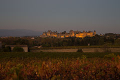 French wine yard. Photograph of french wine yard, Carcassonne, France Royalty Free Stock Images