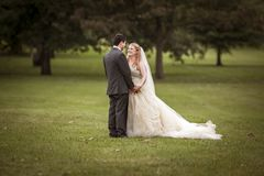 Photograph, Gown, Bride, Man stock images