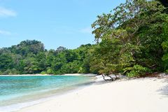 Azure Sea Water, White Sand, Green Trees - Neil`s Cove at Radhanagar Beach, Havelock Island, Andaman & Nicobar, India. This is a photograph of green trees of stock photography