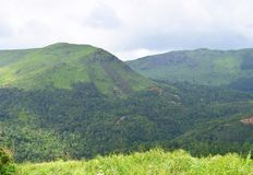Green Hills - Western Ghats - Landscape in Kerala, India. This is a photograph of greenery-covered hills of Western Ghats, captured in Idukki district, Kerala Stock Photo