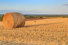 Hay Bales. A photograph of hay bales in the Sussex countryside, taken with evening light Royalty Free Stock Images