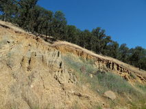 Photograph of Hillside Showing Soil Erosion Royalty Free Stock Photos