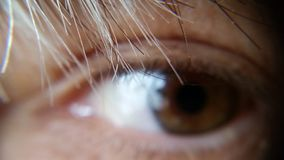 Photograph of a Human Eye Royalty Free Stock Photography