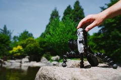 Photograph male hand handling an old vintage camera on tripod in front of water pond in Planten un Blomen Park Hamburg. Germany royalty free stock photography