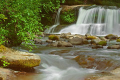 Photograph of McDowell Creek Falls stock photos