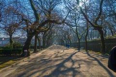 Parc path in Santiago de Compostela. Photograph of a path in a parc in Santiago de Compostela, Galicia, Spain stock photo