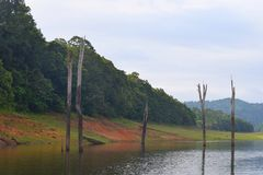 Kerala Landscape - Periyar Lake and National Park, Thekkady, Kerala, India. This is a photograph of Periyar Lake and Periyar National Park, located in Thekkady Stock Images