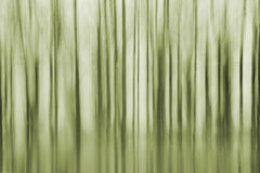 Trees abstract Stock Photography