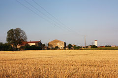 Photograph of rural France during the summer. Rural landscape with ripe wheat field in the foreground with traditional farm buildings behind set against a Stock Photos