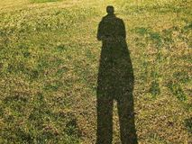 Shadow on the grass filed stock photos