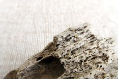 Drift wood close up texture Royalty Free Stock Photos