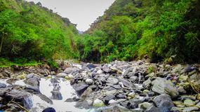 stony river in the middle of the jungle royalty free stock photos
