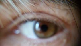 Photograph of a Single Human Eye Stock Images