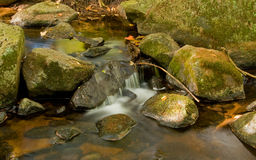 Babbling Brook Stock Images