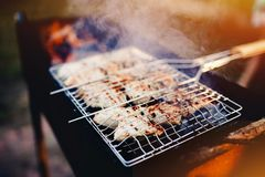 Photograph of some chicken meat on the barbecue. Chicken grilled with smoke. Conception is recreation on the landscape, campaign, camping stock photo